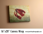 canvas wraps 050 copy